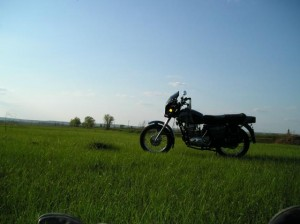 Лежу в поле... Соломинка во рту - релакс да и только :)